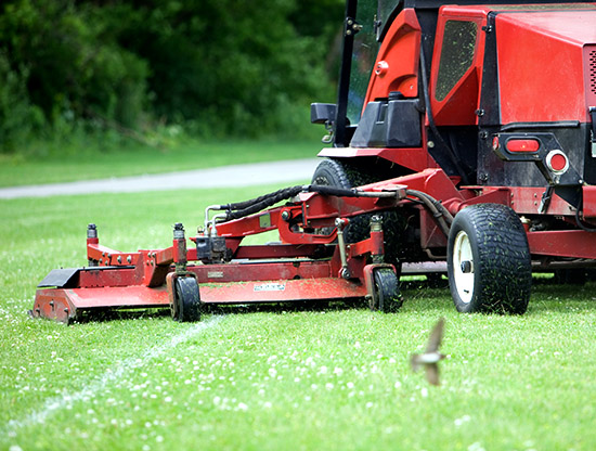 Commercial Lawn Mower Cutting Soccer Field Near Walking Path
