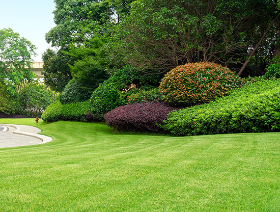 Oshawa lawn cutting